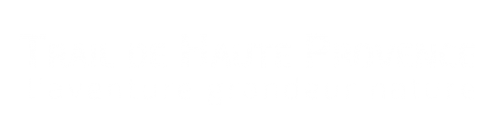 logo-blancTHP